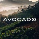 Avocado Green Mattress Coupon Codes