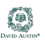 David Austin Coupon Codes
